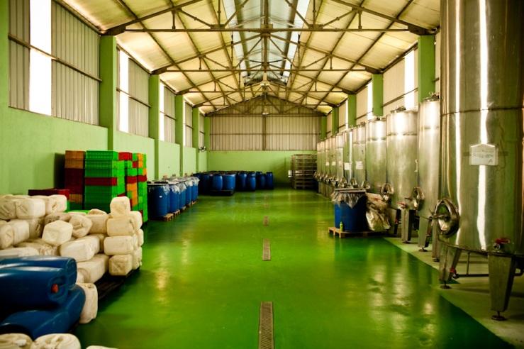 Son Tinh Factory
