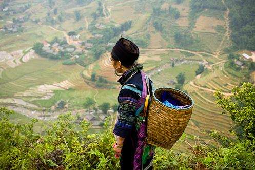 Hmong Woman in Sapa