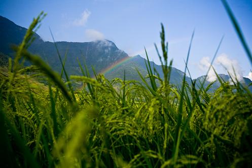 Rainbow in Sapa