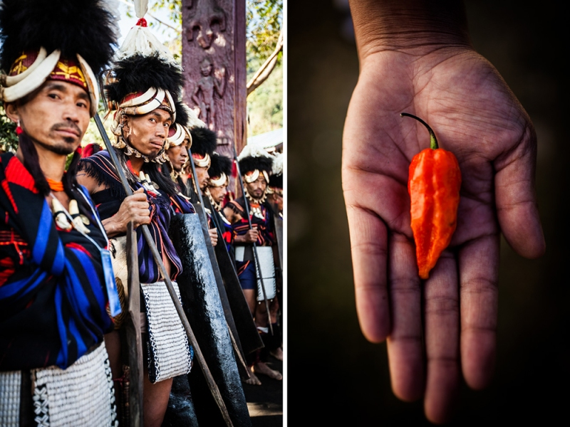 The Naga Chili World S Hottest In Nagaland India