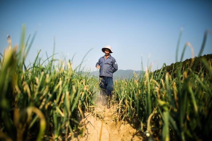 0214 AJS NYT Dalat Farmers PES-197