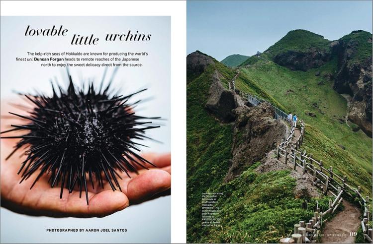 Hokkaido-Sea-Urchins-1